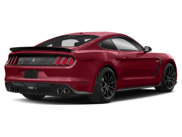 New 2019 Ford Mustang SHELBY GT350R FASTBACK